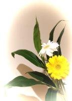 お花を飾りました