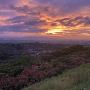 夜景スポット 平川市志賀坊森林公園