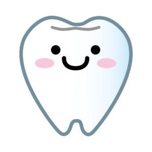 またお友達と激突!今度は歯が欠けた、しかも永久歯!