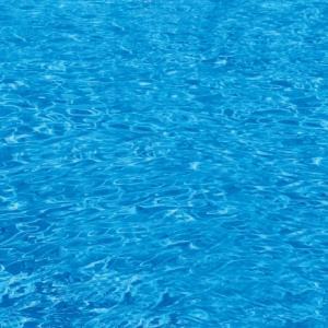 今年度の水泳授業とスイミングスクールはどんな感じ?
