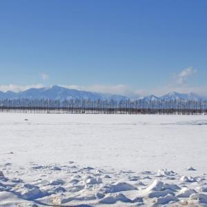 2020.11.30 単調な雪原