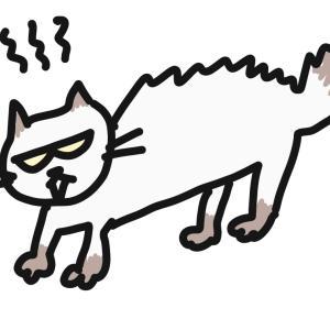半沢直樹とネコちゃんが共演したら、今の日本の閉塞感を打破できるのでわ??と妄想してたら、なんだか幸せな気持ちになった話
