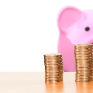 6月は食費が予算オーバー 要因は成城石井とクレジット払い