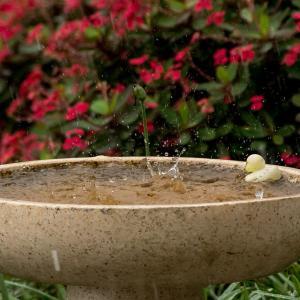 ゲリラ豪雨でベランダが池に!?排水溝や排水口はつまりがないように掃除しておかないと怖い