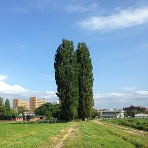 田舎者に道都・札幌は眩し過ぎる街です