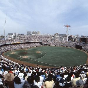 野球には詳しくないけれど野球場にはちょっと詳しいのだ