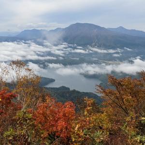 キノコと雲海…斑尾山登山③