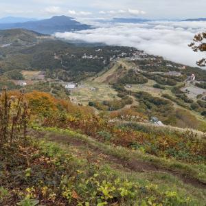 キノコと雲海…斑尾山登山④