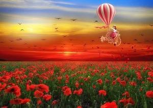気球の上からみた意識