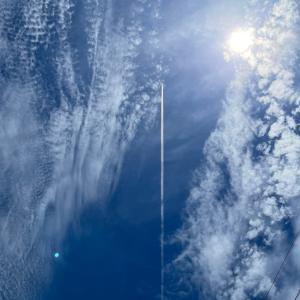 青い空、白い雲、そして(冬のヒーター)俺のマグナムのお片付け〜パンダメダカ〜