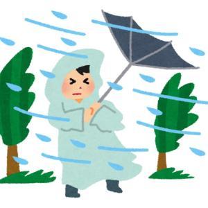 【介護】豪雨の中、父を探す。