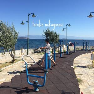 運動不足を解消!トルコの健康遊具
