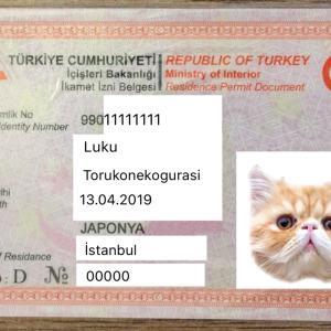 【イカメット2021】トルコで初めての滞在許可申請!必要書類や手順・面接にあたっての心構え