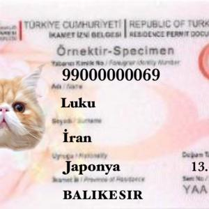 【2021年3月】トルコの滞在許可・イカメットの変更点
