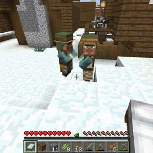 【マイクラ】雪原の村の湧き潰しと整地と侵入者