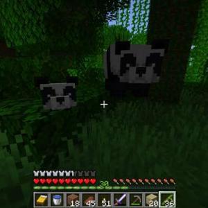 【マイクラ】パンダと一緒に帰る