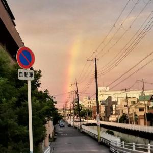 雨上がりの虹をみて想ったこと