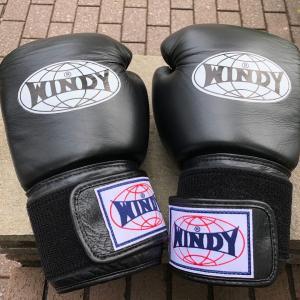 今日は1人でボクシング