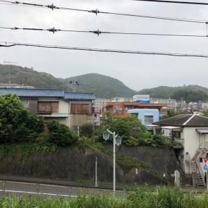 三浦半島縦断トレイルチャレンジしたら大変でした