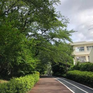 呑川緑道を通って渋谷に行ってSIBUYA CITY FCの事務所をチラ見朝ラン