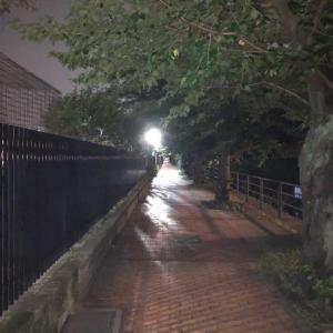 運動週間3日めサンダルで夜の公園を駆ける