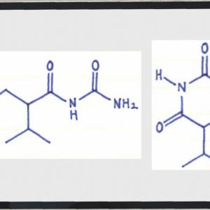 ブロモバレリル尿素、アリルイソプロピルアセチル尿素の薬効・半減期など【市販薬含有】