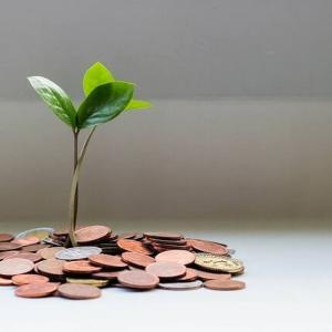 あなたのお金を無駄にしない4つの投資をご紹介