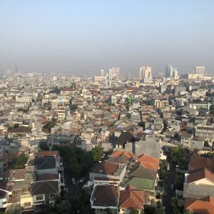 【インドネシアマーケット】最大の魅力は1.8億人の中間層