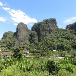 【インドネシア古代ロマン】マカッサル近くの洞窟で世界最古の壁画が見つかる