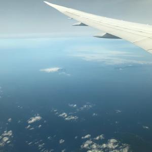 【インドネシア渡航】たった18人搭乗の帰国便で無事日本到着!