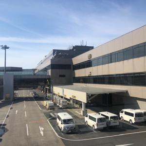 【日本帰国】水際対策!厳格なプロセスで日本入国!