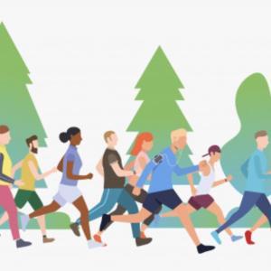 夏のノクターンマラソン経過報告