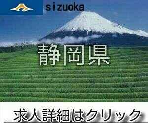 静岡県ナイトワーク求人情報