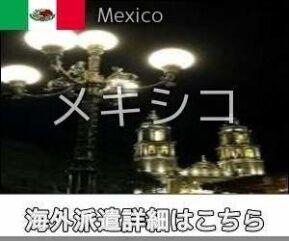 メキシコインコール求人情報