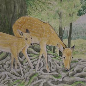 水彩画「春日の森の鹿」