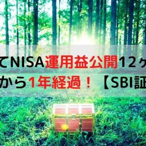 つみたてNISA運用益公開12ヶ月目!開始から1年経過!【SBI証券】