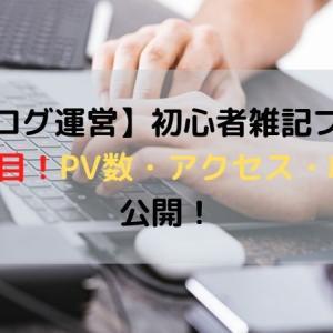 【ブログ運営】初心者雑記ブログ4ヶ月目!PV・アクセス・収益公開!