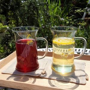 ジンジャエールの素と紫蘇ジュース