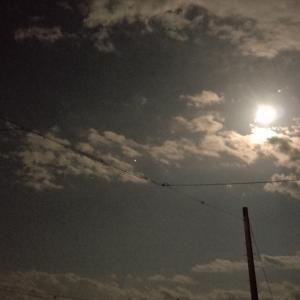 この後20時から♡公式LINEより、満月のオラクルリーディングします♡♡