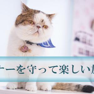 日本独特のマナーって?外国人旅行客に最初に伝えておきたい12の事柄