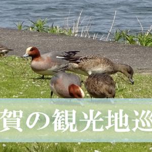 滋賀の観光ならここがおすすめ!インスタ映えするおしゃれな5つのスポット!