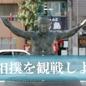 大相撲を観戦しよう!番付とは?歴史や基本情報を詳しく解説!