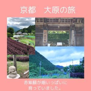 京都 大原の旅