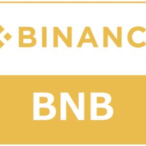 バイナンスコイン(BNB)はガチホが正解