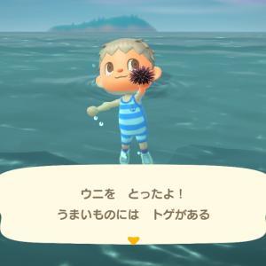 【Switch】「あつ森」新たに獲得した「海の幸」を博物館に寄贈して、生物学を勉強する!!