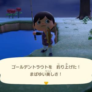 【Switch】「あつ森」超レア魚「ゴールデントラウト」と「イトウ」釣りに挑む!!
