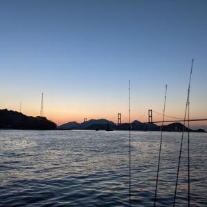 来島海峡 4月11日 ハマチを求めて