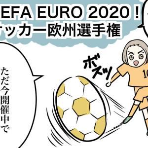 開催中!欧州選手権サッカー大会!オランダ代表も頑張れー!