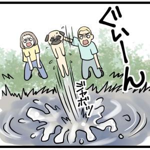 初めてわんこが泳いだ日【後編】