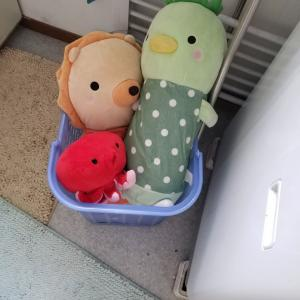 洗濯祭り開催!